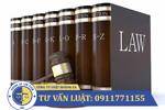 Dịch vụ luật sư tư vấn thuế, kế toán, báo cáo tài chính